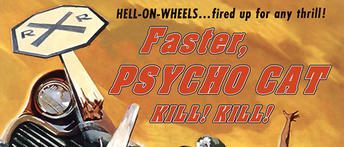 Faster Psycho Cat – Kill! Kill! – DVD
